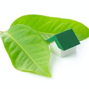 Eco green house
