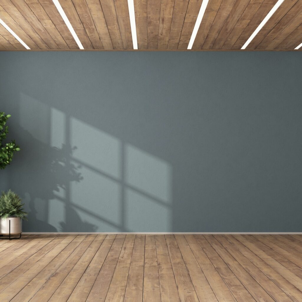 Empty room with plants and blue wall