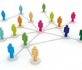 The Matrix Management Structure